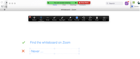 The Zoom tech tool that allows you to screenshare a virtual whiteboard. This screenshot shows the whiteboard in use. Annotation tools such as draw or add text are displayed at the top of the screen for use on the white board.