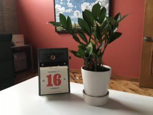 calendar and plant